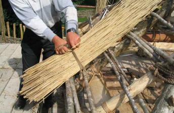 Заготовка тростника для кровли на Руси