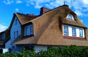 Экологически чистая камышовая крыша